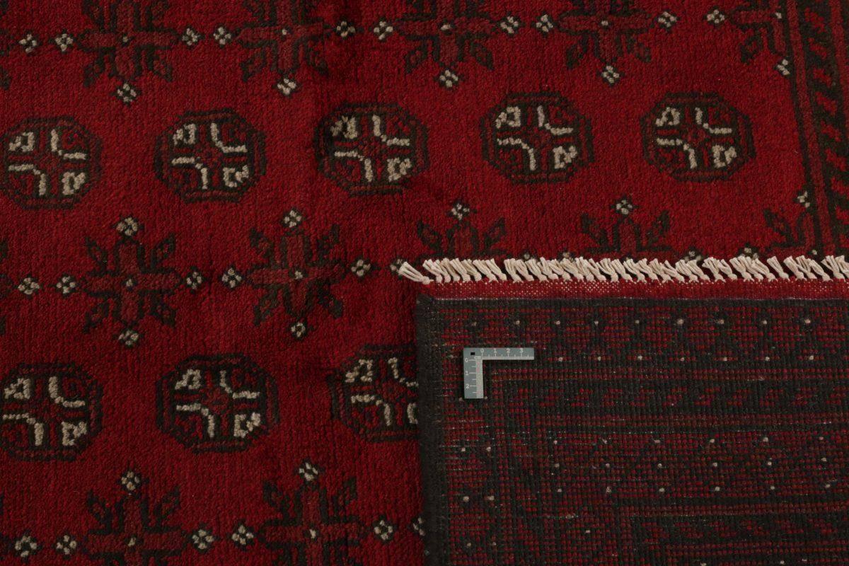 Dywan  Aktscha 1396537 198x289cm