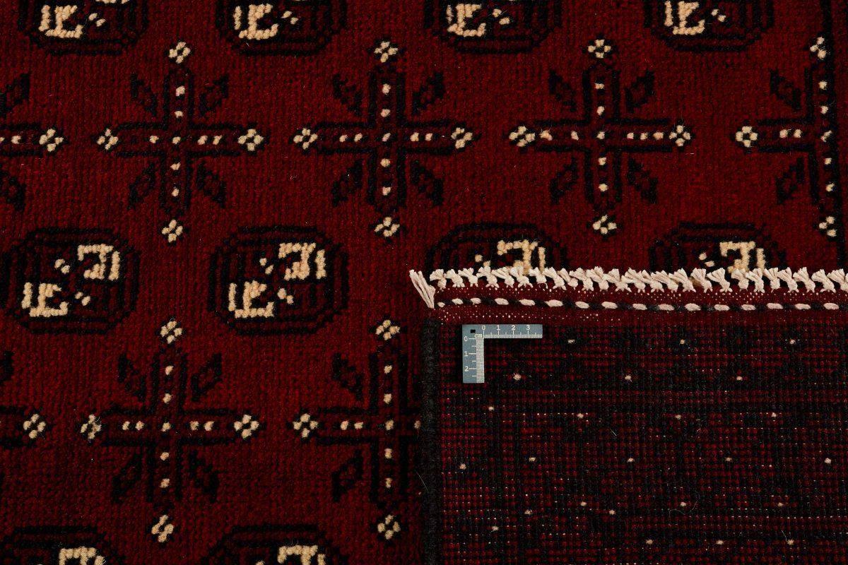 Dywan  Aktscha 1398137 202x289cm