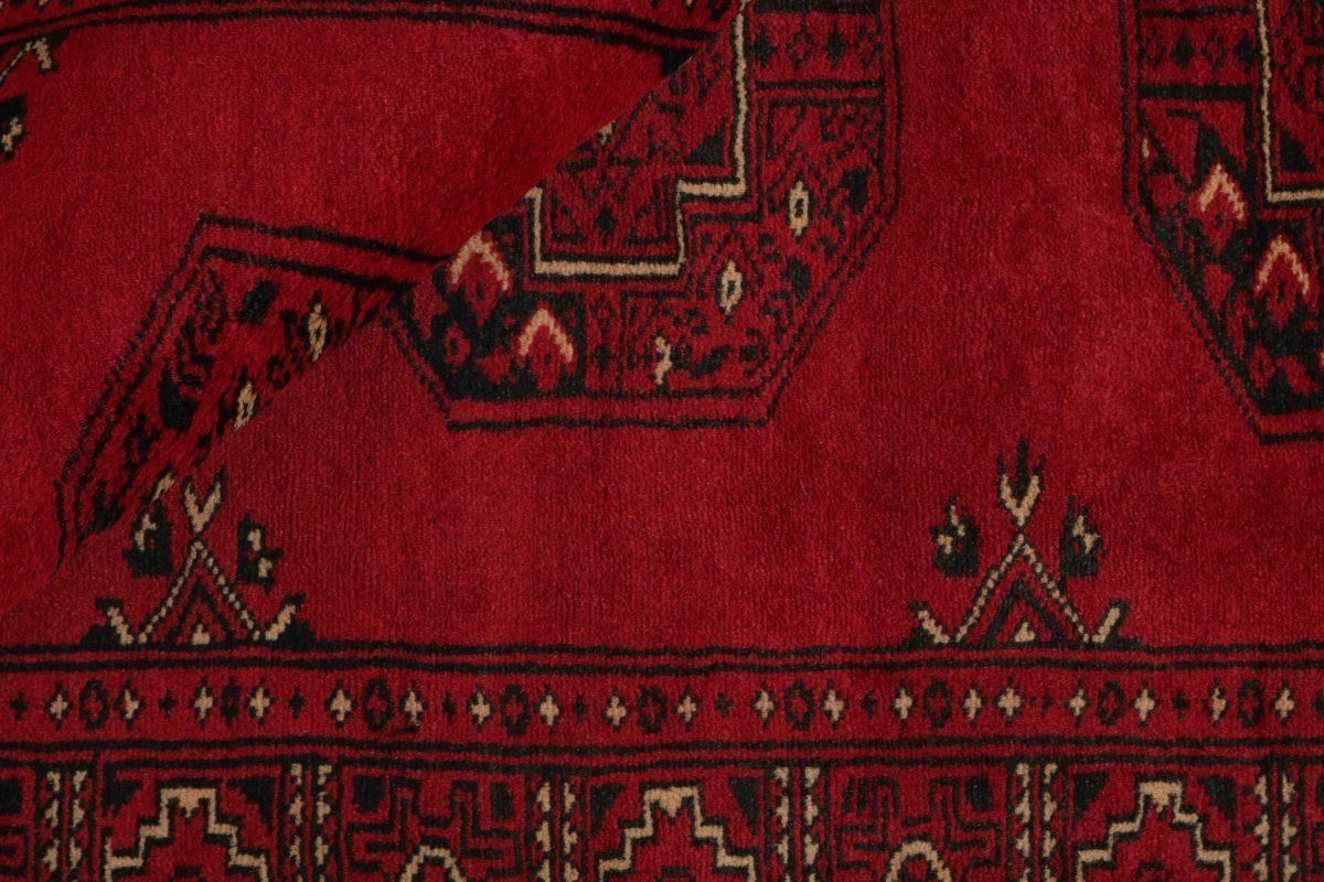 Dywan  Pakistan Bokhara 1382207 79x118cm