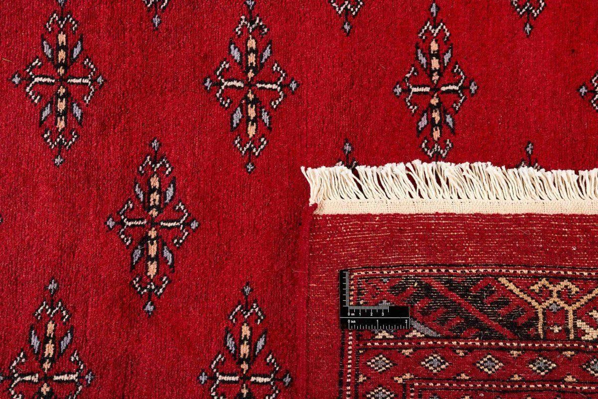 Dywan  Pakistan Bokhara 1407122 200x312cm