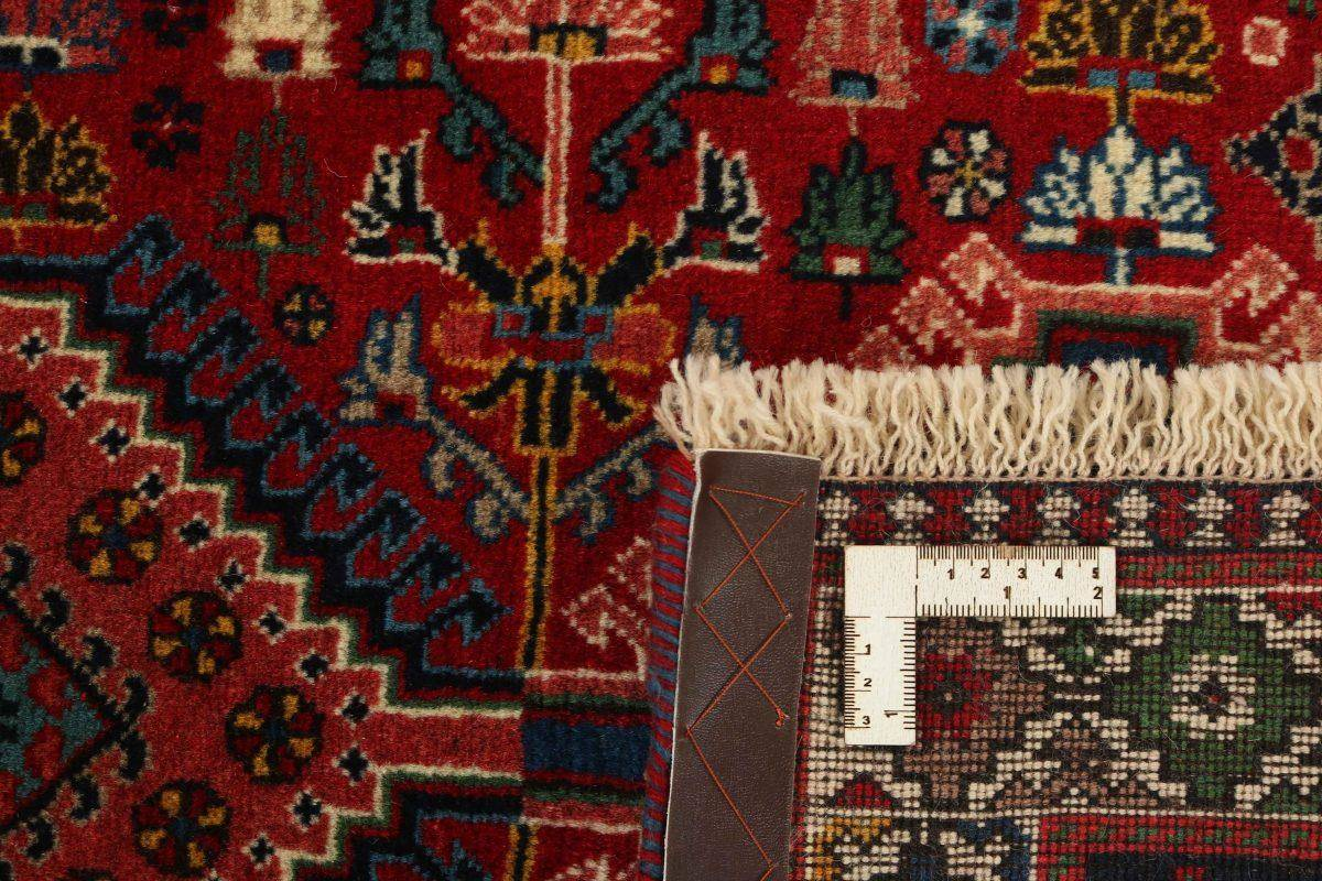 Dywan  Yalameh 1415978 82x202cm